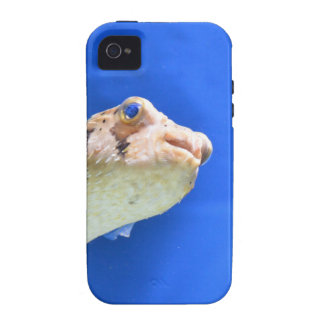 Porcupinefish Case-Mate iPhone 4 Cover