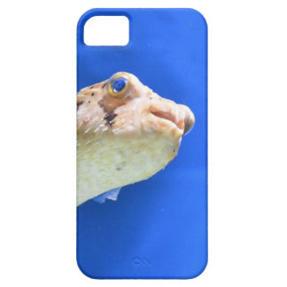 Porcupinefish iPhone 5 Covers