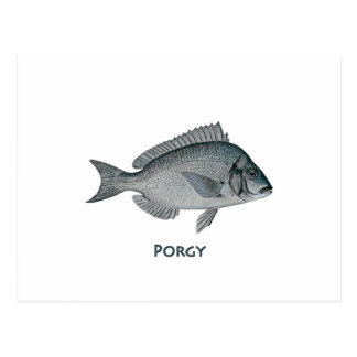 Porgy Postcard