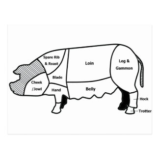 Pork Diagram Postcard
