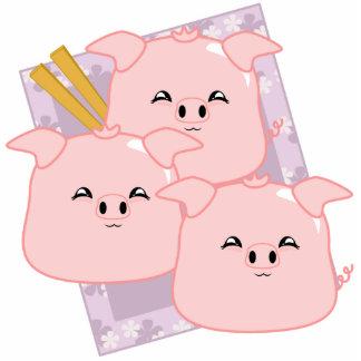 Pork Dumplings Platter Photo Cutout