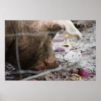 Pork The Other Ork Pig Slop Bliss Poster