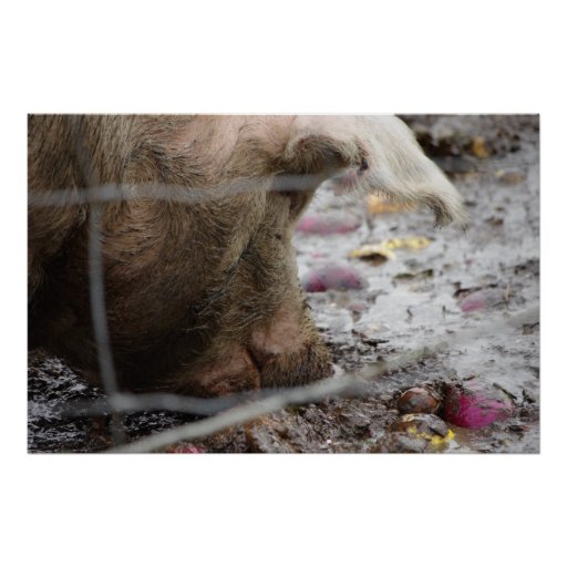 Pork The Other Ork Pig Slop Bliss Posters