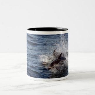 Porpoises Mug