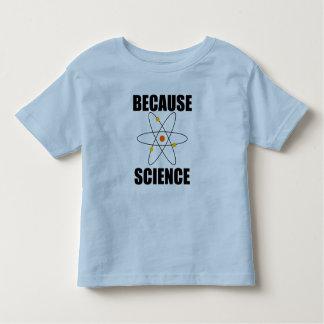 Porque ciencia playera