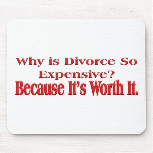 Porqué es el divorcio tan costoso tapetes de ratones