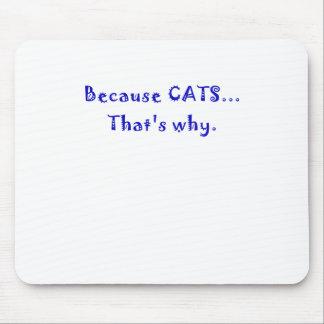 Porque gatos que es por qué alfombrillas de raton