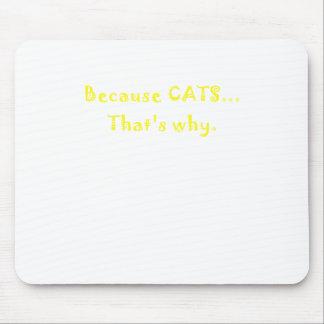 Porque gatos que es por qué tapete de ratón