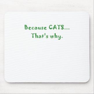 Porque gatos que es por qué tapetes de raton