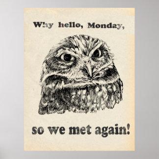 Porqué hola búho enojado de lunes póster