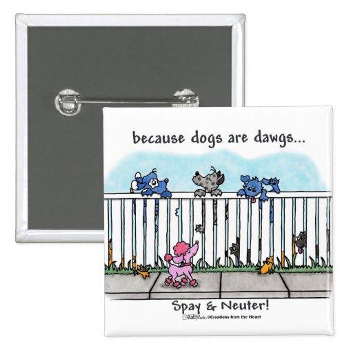 Porque los perros son Dawgs Pin Cuadrada 5 Cm