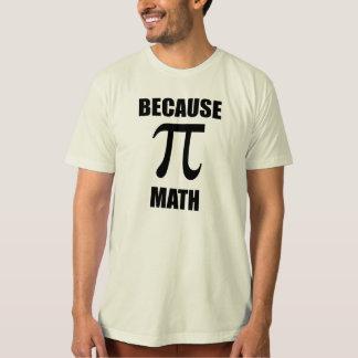 Porque matemáticas poleras