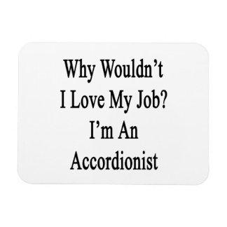 Porqué no yo ame mi trabajo que soy acordeonista imán