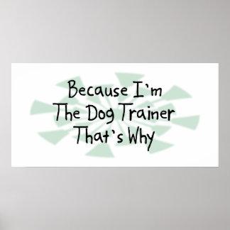 Porque soy el adiestrador de perros póster