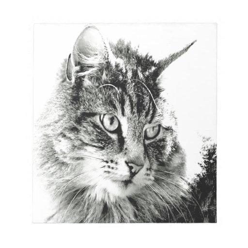 Porqué usted no me ama emoción del gato blocs de notas