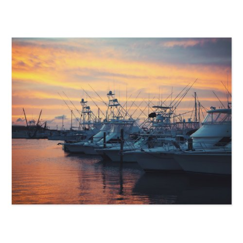 Port Aransas Marina Sunset Postcard