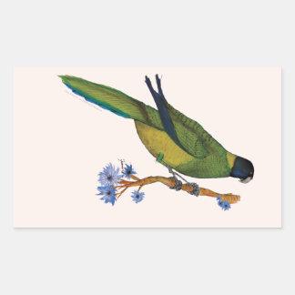 port lincoln parrot, tony fernandes rectangular sticker