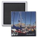 Port of Alicante Magnets