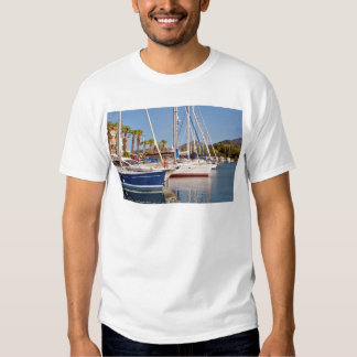 Port of Argelès-sur-Mer in France Tees