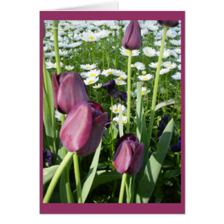 port wine tulips greeting card