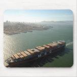 Portacontenedores de San Francisco Tapete De Raton