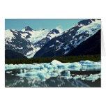 Portage Glacier, north of Port Seward, Alaska Greeting Cards