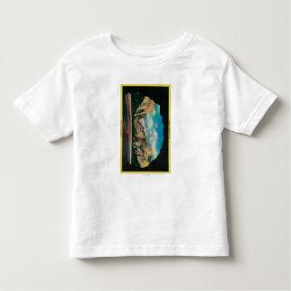 Portal of Grandeur view of Yosemite Valley Toddler T-shirt