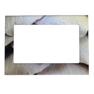 Portarretrato de imán piña de abeto marcos magneticos
