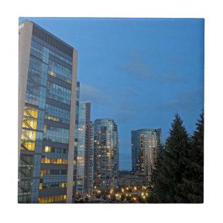 Portland céntrica en la oscuridad azulejo cuadrado pequeño