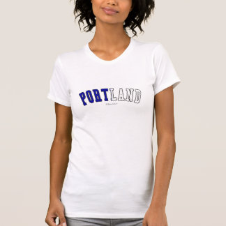 Portland in Maine state flag colors T-Shirt