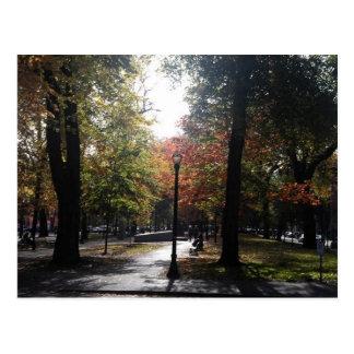 Portland Oregon Park Blocks in Fall Postcard