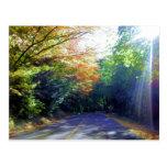 Portland, Oregon Road to the Rose Garden Postcard