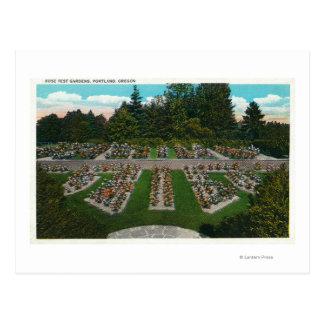 Portland, OregonView de los jardines color de rosa Postal