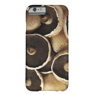 Portobello Mushrooms on White Background Barely There iPhone 6 Case