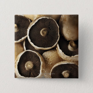 Portobello Mushrooms on White Background Button