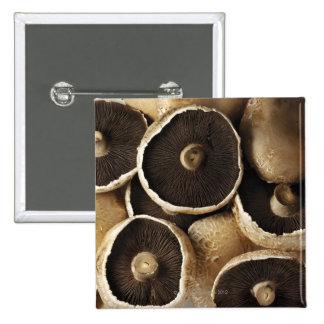 Portobello Mushrooms on White Background Button