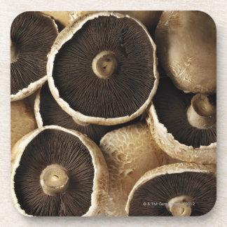 Portobello Mushrooms on White Background Drink Coaster