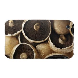Portobello Mushrooms on White Background iPhone 3 Case