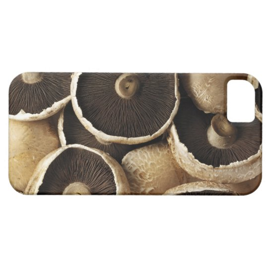 Portobello Mushrooms on White Background iPhone SE/5/5s Case
