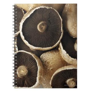 Portobello Mushrooms on White Background Notebook