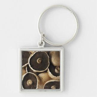 Portobello Mushrooms on White Background Silver-Colored Square Keychain