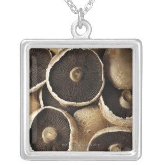 Portobello Mushrooms on White Background Square Pendant Necklace