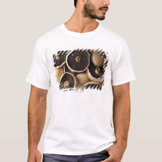 Portobello Mushrooms on White Background T-Shirt
