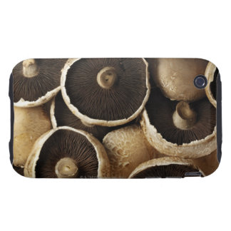 Portobello Mushrooms on White Background Tough iPhone 3 Cover