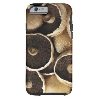 Portobello Mushrooms on White Background Tough iPhone 6 Case