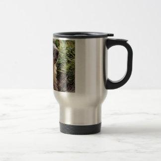 Portrait Alpine Marmot Mug