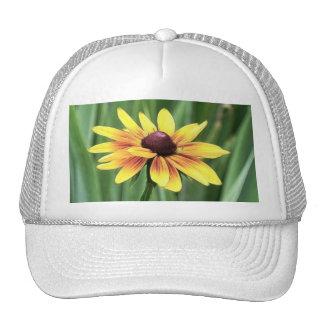 Portrait - Black Eyed Susan Hat