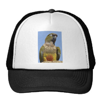 Portrait Burrowing Parrot Trucker Hats