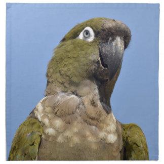 Portrait Burrowing Parrot Napkins