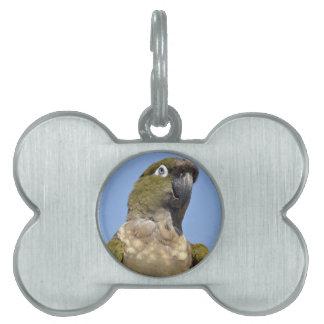 Portrait Burrowing Parrot Pet Name Tags